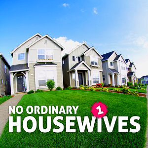No Ordinary Housewives 歌手頭像