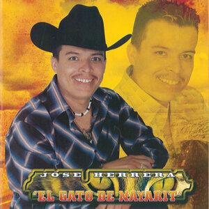 Jose Herrera El Gato De Nayarit 歌手頭像