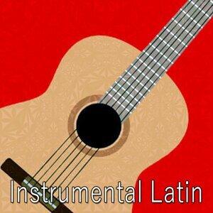 Guitar Instrumentals