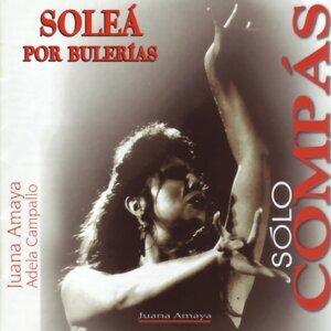 Grupo de Juana Amaya 歌手頭像