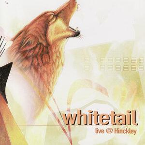 Whitetail 歌手頭像