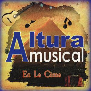 Altura Musical 歌手頭像