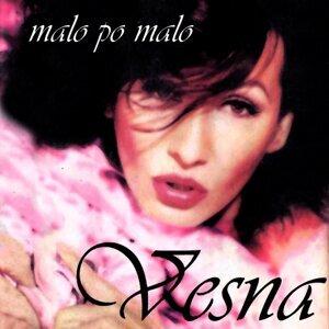 Vesna Zmijanac 歌手頭像