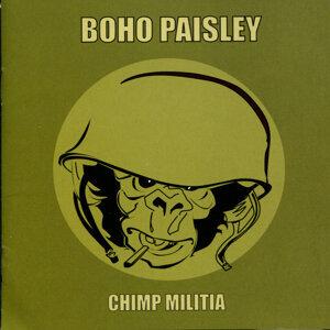 Boho Paisley 歌手頭像
