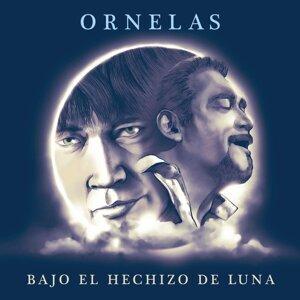 Raúl Órnelas