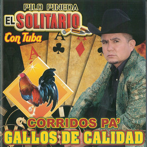 Pilo Pineda El Solitario 歌手頭像