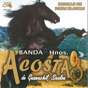 Banda Hermanos Acosta 歌手頭像