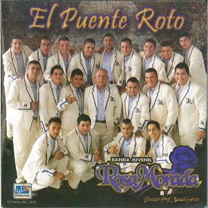 Banda Juvenil Rosa Morada 歌手頭像