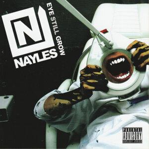 Nayles 歌手頭像