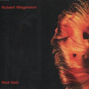 Robert Wegmann 歌手頭像