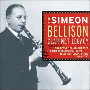 Simeon Bellison 歌手頭像