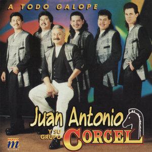 Juan Antonio y Su Grupo Corcel 歌手頭像