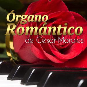 Cesar Morales 歌手頭像
