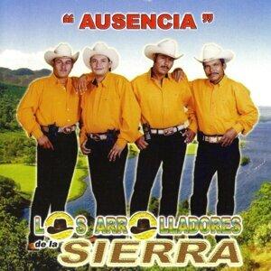 Los Arrolladores De La Sierra 歌手頭像