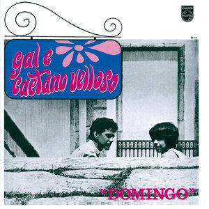 Gal Costa,Caetano Veloso 歌手頭像