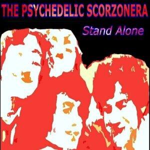 The Psychedelic Scorzonera 歌手頭像