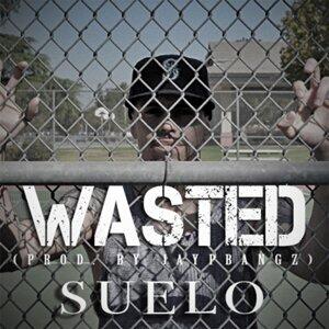 Suelo 歌手頭像
