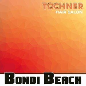 Tochner 歌手頭像