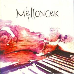 Melloncek 歌手頭像