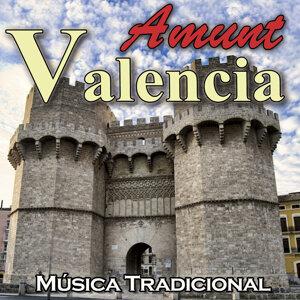 Banda Musical de la Albufera