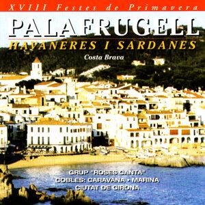 Havaneres I Sardanes 歌手頭像