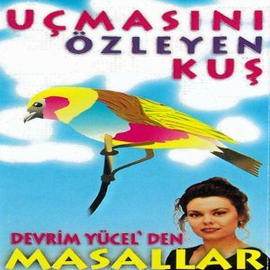 Can Polat Yücel 歌手頭像