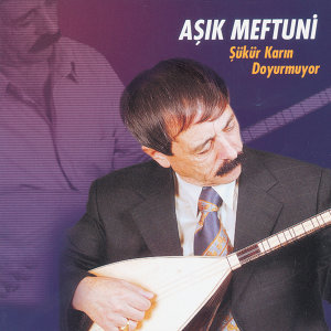 Asik Meftuni 歌手頭像
