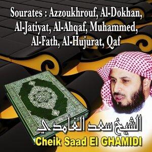 Cheik Saad El-Ghamidi 歌手頭像