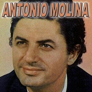Antonio Molina - Copla 歌手頭像