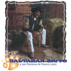 Baltazar Brito y Sus Panteras de Nuevo León 歌手頭像