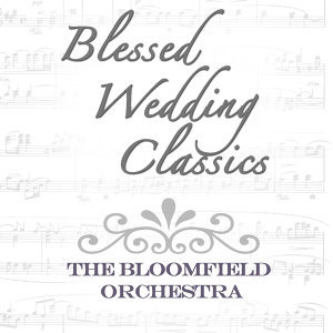 The Bloomfield Orchestra, Leo Bloomfield, Timothy Finnegan 歌手頭像