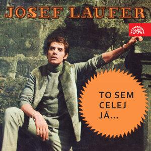 Josef Laufer 歌手頭像