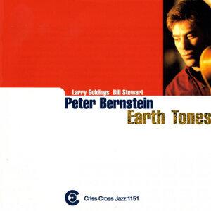 Peter Bernstein Quartet 歌手頭像