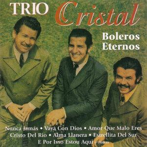 Trio Cristal 歌手頭像