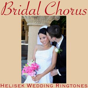 Helisek Wedding Ringtones 歌手頭像