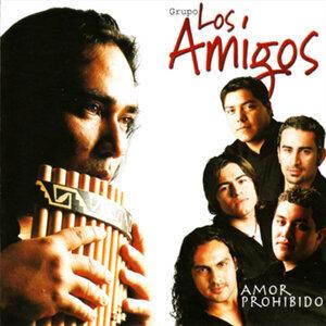 Grupo Los Amigos 歌手頭像
