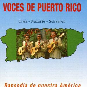 Voces de Puerto Rico 歌手頭像