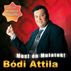 Bódi Attila 歌手頭像