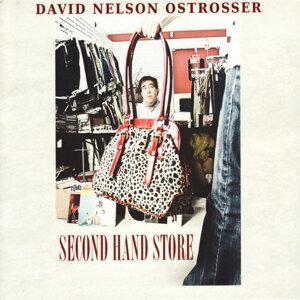 David Nelson Ostrosser 歌手頭像