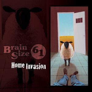 Brain Size 61 歌手頭像