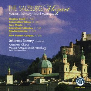 Amor Artis Chorus/Musica Antiqua Sankt Petersberg 歌手頭像