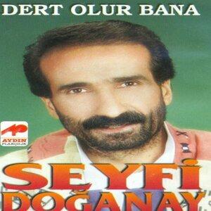 Seyfi Doğanay 歌手頭像