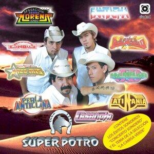 Super Potro 歌手頭像