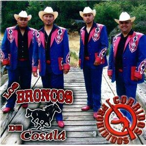 Los Broncos De Cosala 歌手頭像