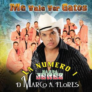 La Numero 1 Banda Jerez 歌手頭像