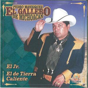 El Gallero De Michoacan 歌手頭像