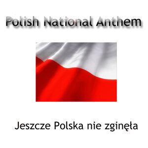 Polish Sinfonietta 歌手頭像