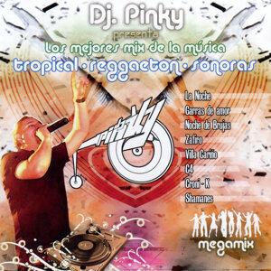 DJ Pinky 歌手頭像