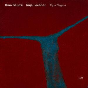 Dino Saluzzi,Anja Lechner 歌手頭像