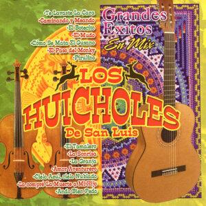 Los Huicholes de San Luis